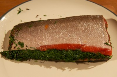Gravadlax, ready for slicing